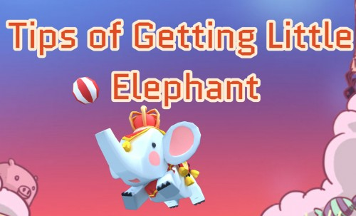 Tips of Getting Little Elephant Fragments