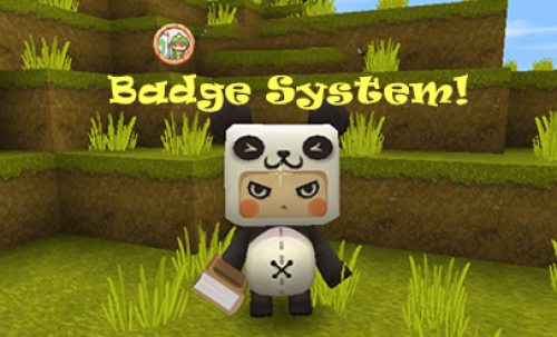 Introduction of Badge System